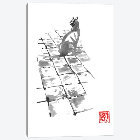 Cat On Pavement Canvas Print #PCN386} by Péchane Art Print