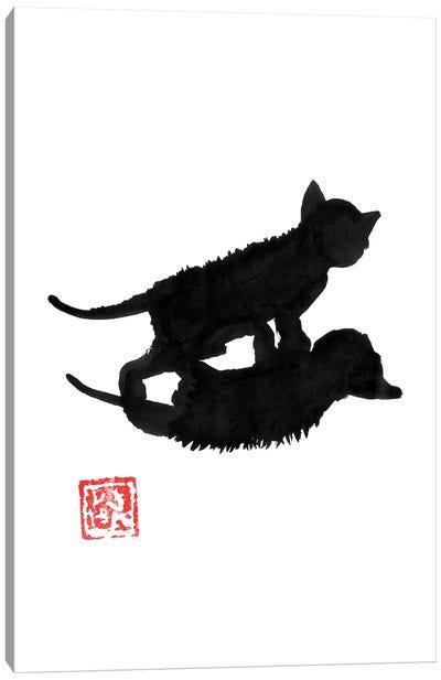 Cat Shadow Canvas Art Print