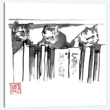 Cats In Library Canvas Print #PCN389} by Péchane Canvas Art