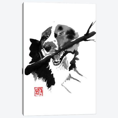 Dog Wood Canvas Print #PCN399} by Péchane Canvas Art Print