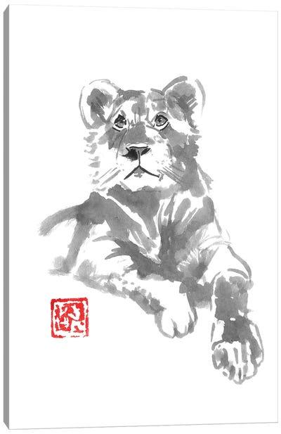 Lion Femaile Canvas Art Print
