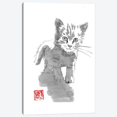 Little Cat Canvas Print #PCN420} by Péchane Canvas Print