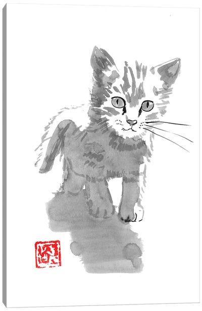 Little Cat Canvas Art Print