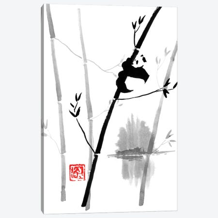 Panda In The Tree II Canvas Print #PCN425} by Péchane Canvas Art
