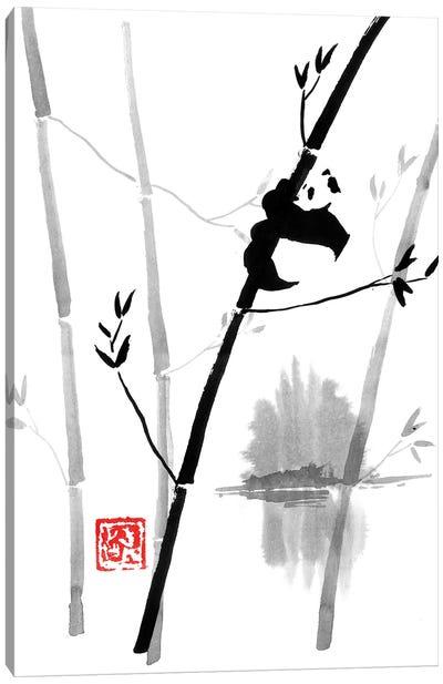 Panda In The Tree II Canvas Art Print