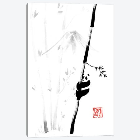 Panda In The Tree III Canvas Print #PCN426} by Péchane Canvas Wall Art