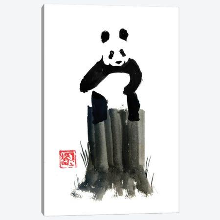 Panda On The Cut Tree Canvas Print #PCN427} by Péchane Canvas Art