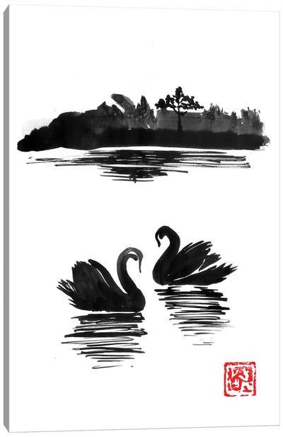 Swan Island II Canvas Art Print