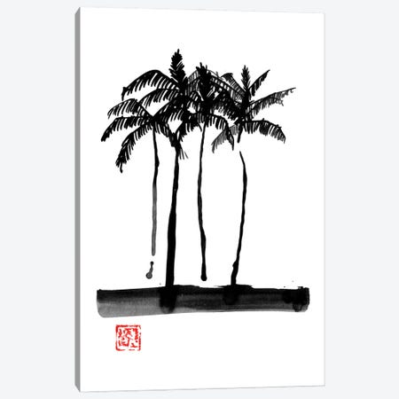 Palmtrees Canvas Print #PCN451} by Péchane Canvas Wall Art