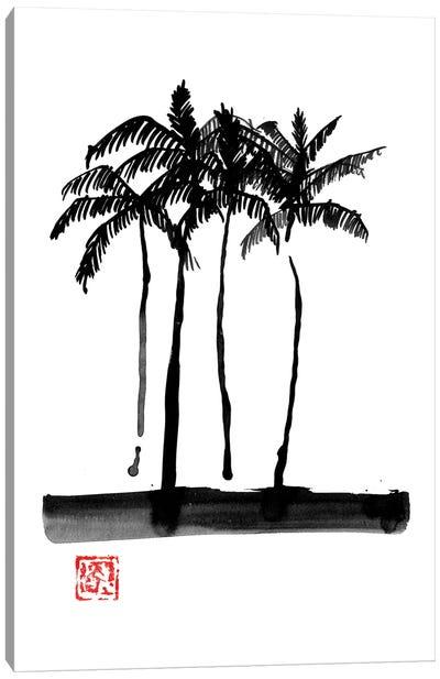 Palmtrees Canvas Art Print