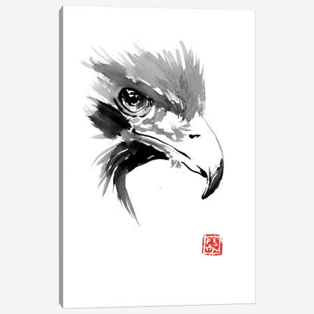 Eagle Canvas Print #PCN47} by Péchane Canvas Wall Art