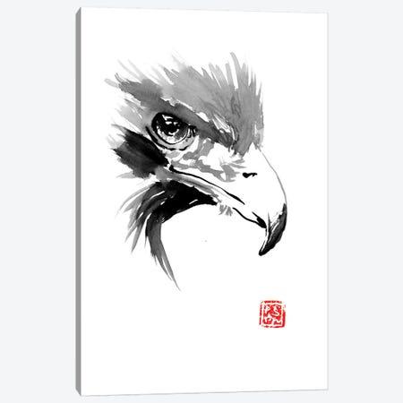 Eagle Canvas Print #PCN47} by Péchane Canvas Wall Art