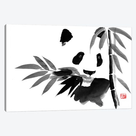 Eating Bamboo Canvas Print #PCN48} by Péchane Canvas Art Print