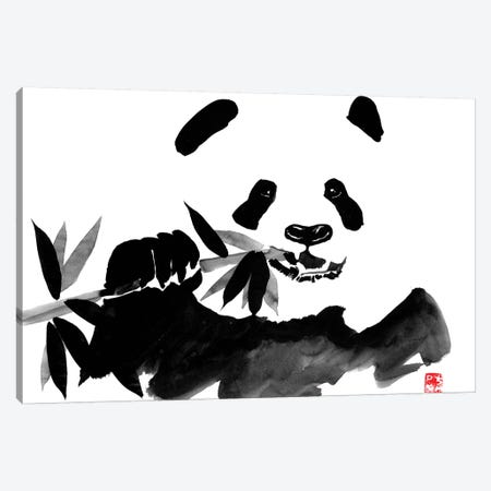 Eating Panda Canvas Print #PCN49} by Péchane Canvas Art Print