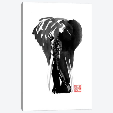 Elephant Canvas Print #PCN51} by Péchane Canvas Art