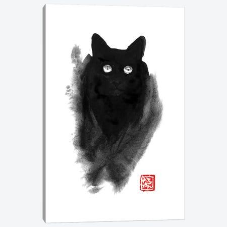 Fluffy Cat Canvas Print #PCN64} by Péchane Canvas Artwork