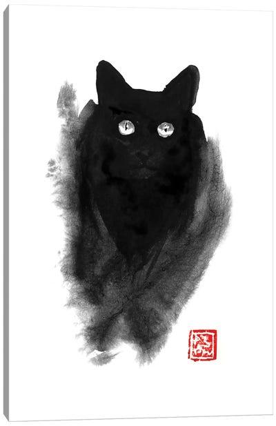 Fluffy Cat Canvas Art Print