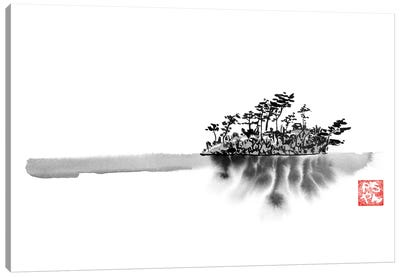 Frozen Island Canvas Art Print