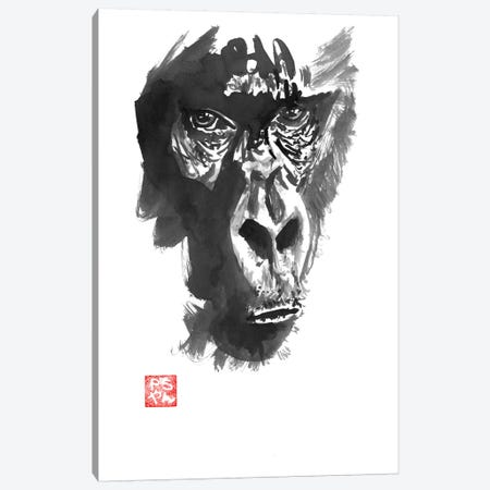 Gorilla Canvas Print #PCN73} by Péchane Canvas Art