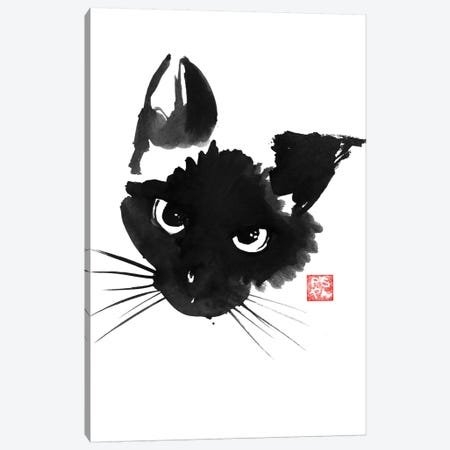 Grumpy Siamese Cat Canvas Print #PCN74} by Péchane Art Print