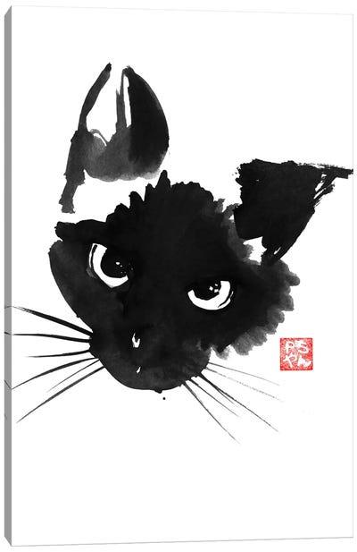 Grumpy Siamese Cat Canvas Art Print
