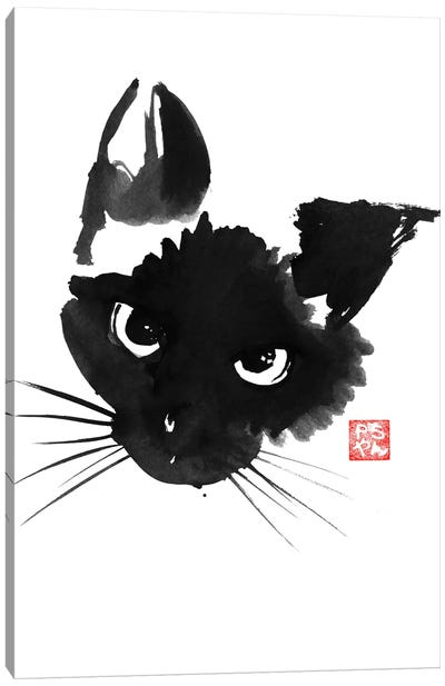 Grumpy Siamese Cat Canvas Art Print