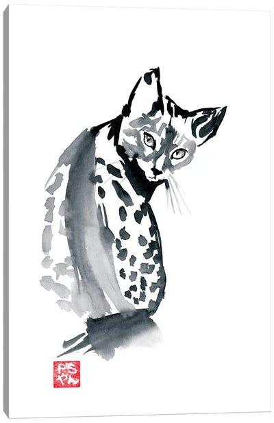 Leopard Cat Canvas Art Print