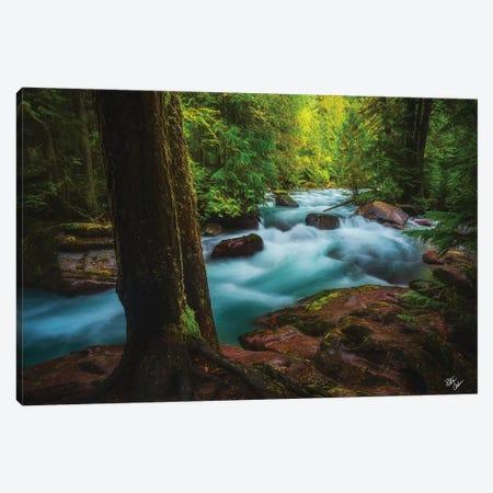 Avalanche Frame Canvas Print #PCS10} by Peter Coskun Canvas Art Print