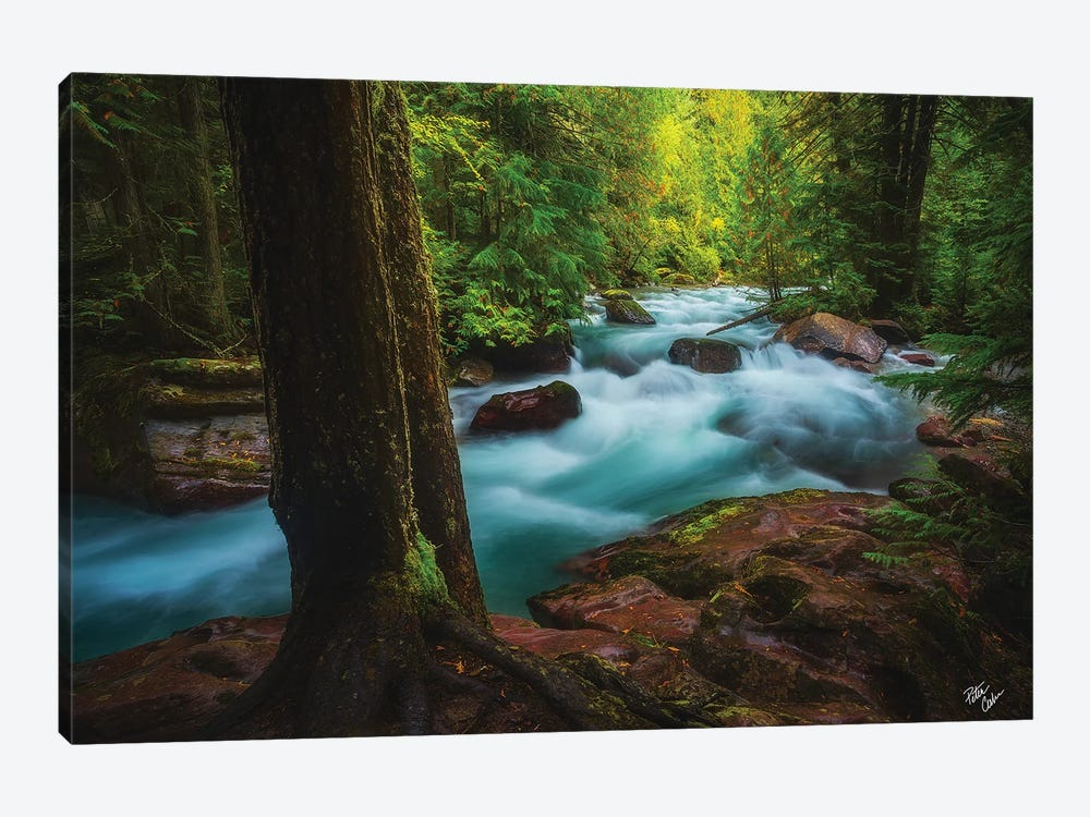 Avalanche Frame by Peter Coskun 1-piece Canvas Art