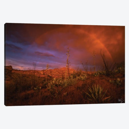 The Coming Storm Canvas Print #PCS114} by Peter Coskun Canvas Art