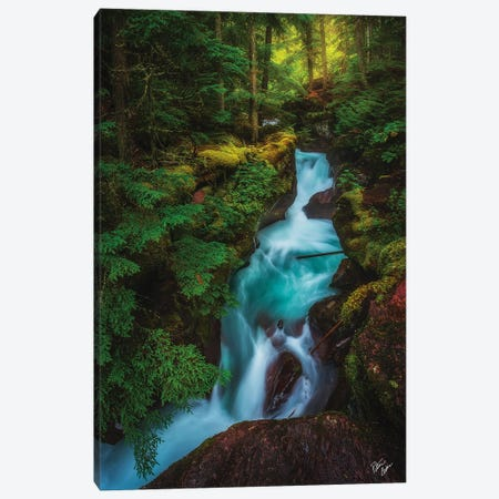 The Gorge Canvas Print #PCS116} by Peter Coskun Canvas Wall Art