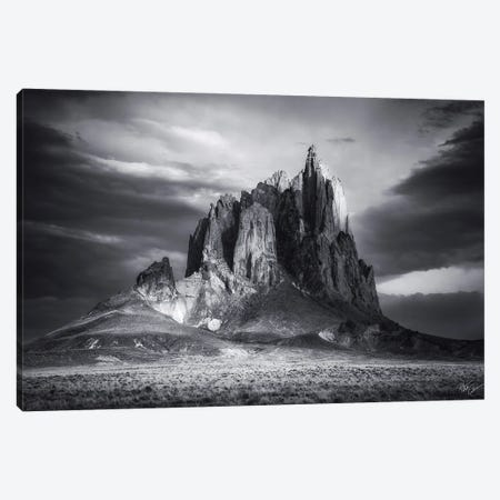 Wings Canvas Print #PCS123} by Peter Coskun Canvas Wall Art