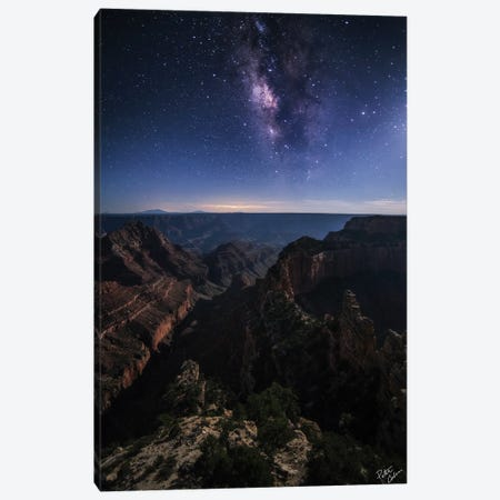 Beauty Of The Night Canvas Print #PCS12} by Peter Coskun Art Print