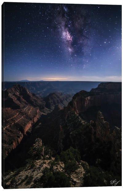 Beauty Of The Night Canvas Art Print