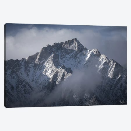 Blue Steel Canvas Print #PCS16} by Peter Coskun Canvas Wall Art