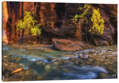 Canyon Smile Canvas Art Print