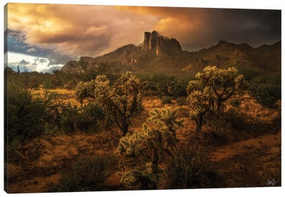 Desert Rains Canvas Art Print