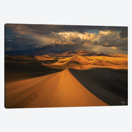 Distant Canvas Print #PCS40} by Peter Coskun Canvas Wall Art