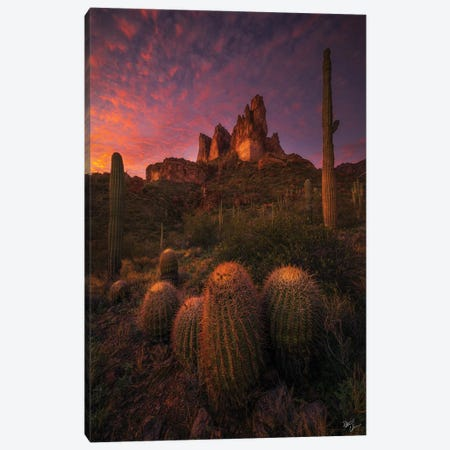 Family Gathering Canvas Print #PCS45} by Peter Coskun Canvas Art Print
