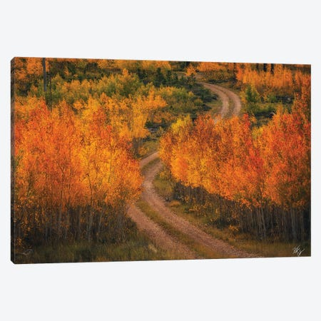 Fire Road Canvas Print #PCS48} by Peter Coskun Canvas Wall Art