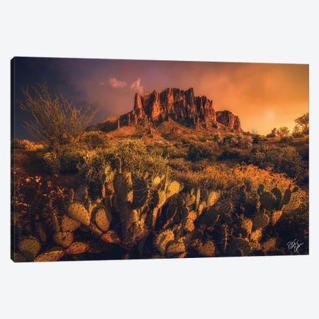 Let There Be Light Canvas Print #PCS62} by Peter Coskun Canvas Artwork
