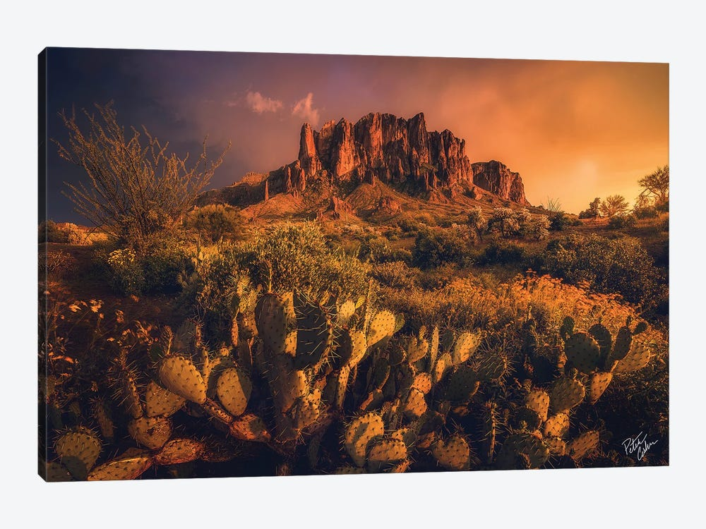 Let There Be Light by Peter Coskun 1-piece Canvas Art Print