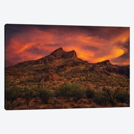 Roadside Attraction Canvas Print #PCS94} by Peter Coskun Canvas Artwork