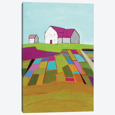 Field of Dreams Canvas Print #PDA4} by Phyllis Adams Canvas Artwork