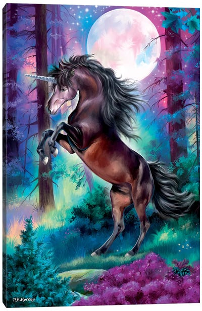Black Unicorn Canvas Art Print