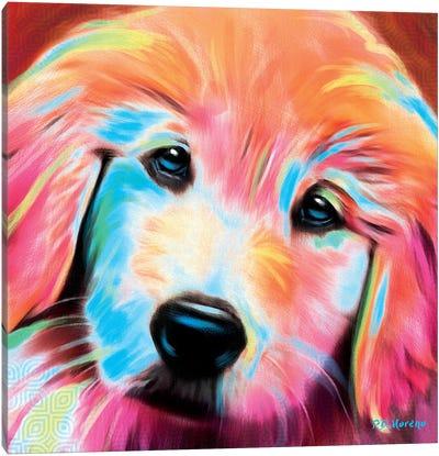 Sandy Canvas Art Print