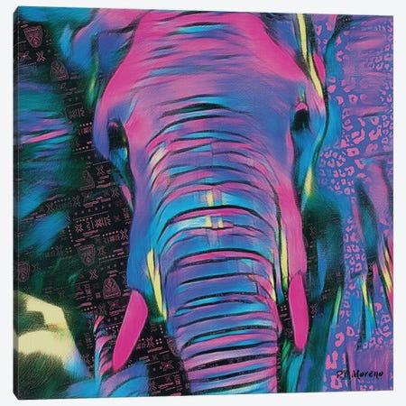 Hugo Canvas Print #PDM50} by P.D. Moreno Canvas Wall Art