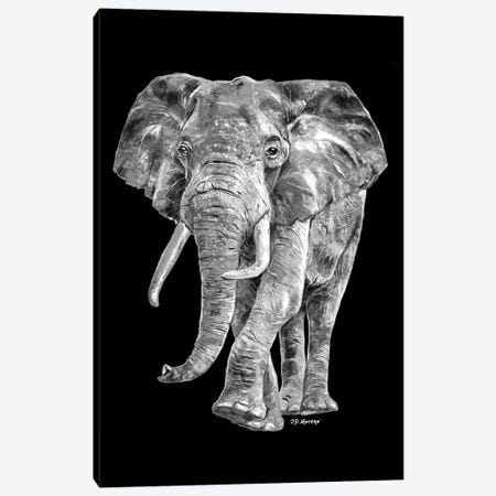 Elephant In Black And White Canvas Print #PDM59} by P.D. Moreno Canvas Wall Art