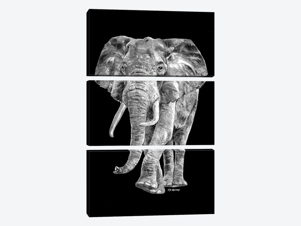 Elephant In Black And White by P.D. Moreno 3-piece Canvas Art Print