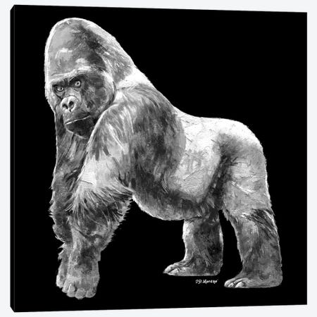 Gorilla In Black And White Canvas Print #PDM61} by P.D. Moreno Canvas Print